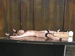 оюутнууд порно ямар ч Туранхай дэгдээхэйн галзуугийн нь залуу